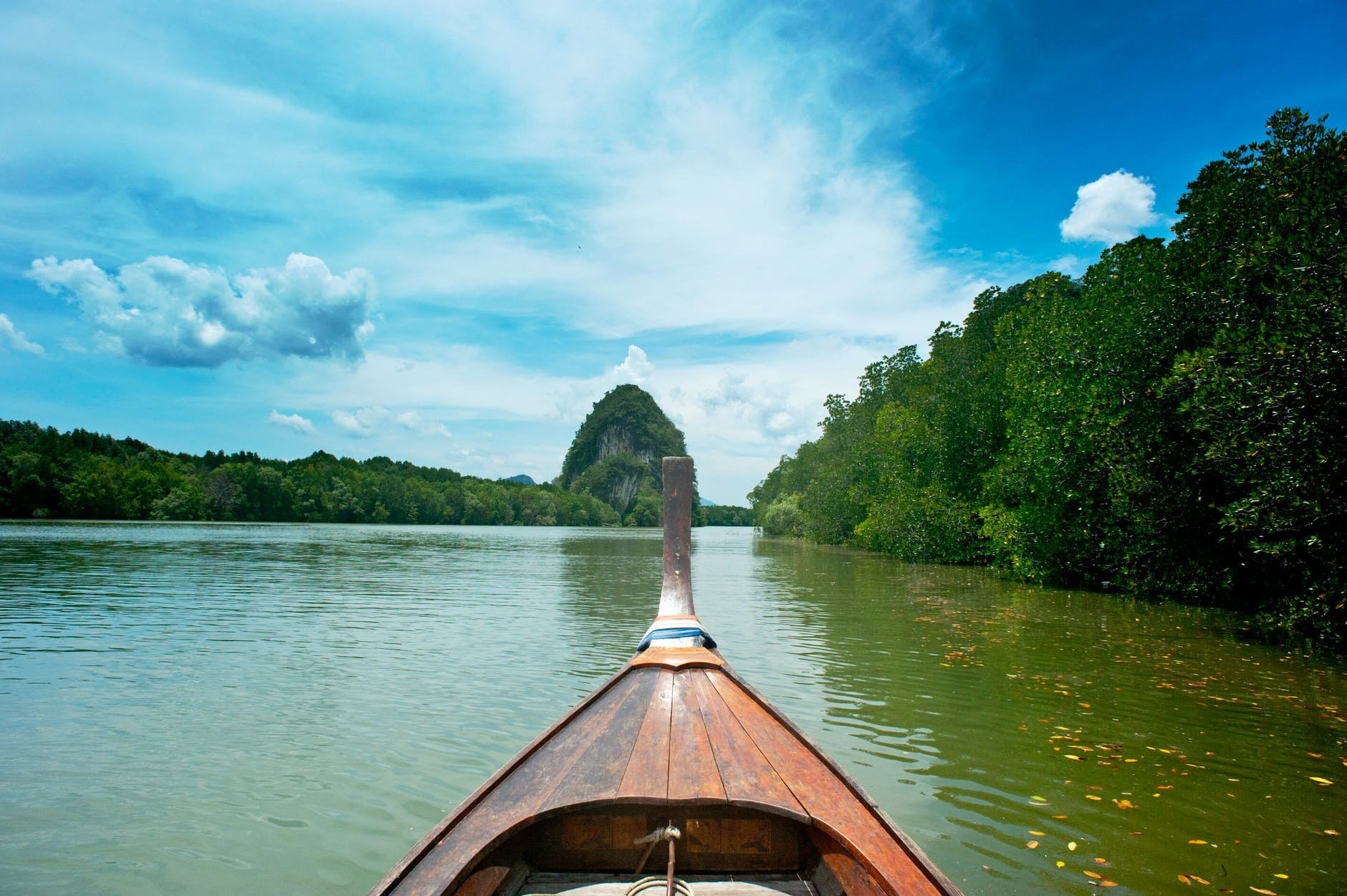 brown wooden canoe near trees